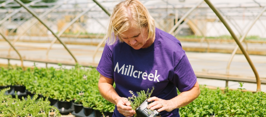 laura with herbs cropped