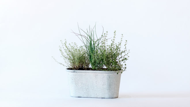 Herb Planters for 2020